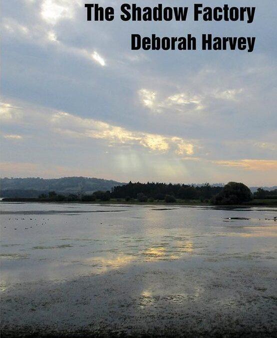 Clare Crossman reviews 'The Shadow Factory' by Deborah Harvey