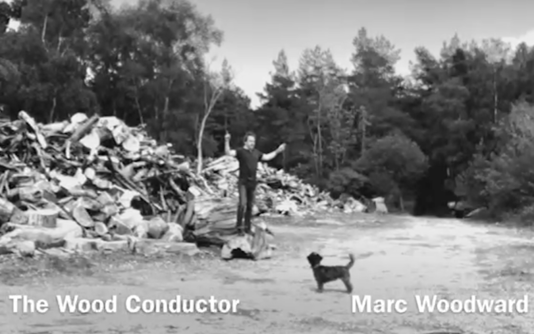 The Wood Conductor