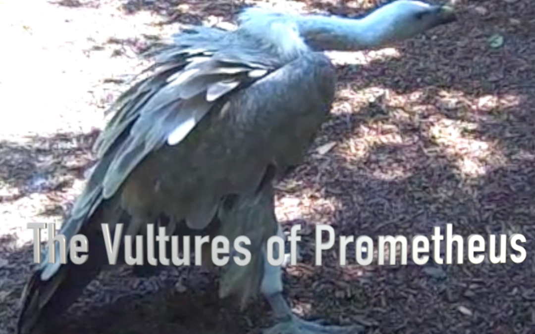 The Vultures of Prometheus by Ruth Aylett